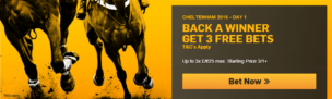 Betfair Back A Winner Promotion