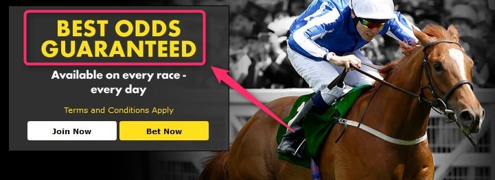 Horse Betting 2nd Place Refund Bet365 BOG - Best Odds Guarantee