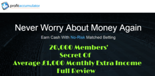 Profit Accumulator Full review
