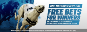 Back A Winner Coral Greyhound T&C