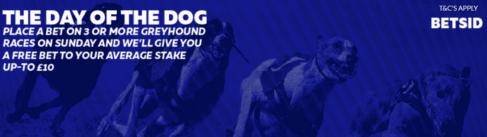 greyhound betting strategy betsid offer