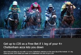 cheltenham betting, 10bet acca insurance offer
