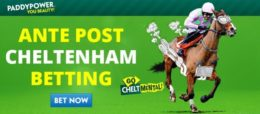 cheltenham betting, ante post image