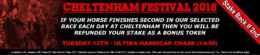 cheltenham betting, bet vision offer