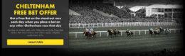 cheltenham betting, bet365 champion offer