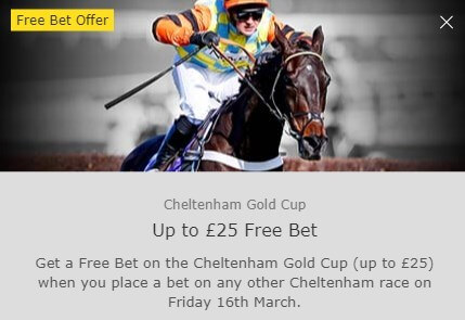 cheltenham betting, bet365 gold cup offer
