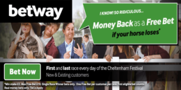 cheltenham betting, betway offer