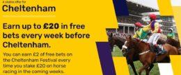 cheltenham betting, dabblebet offer