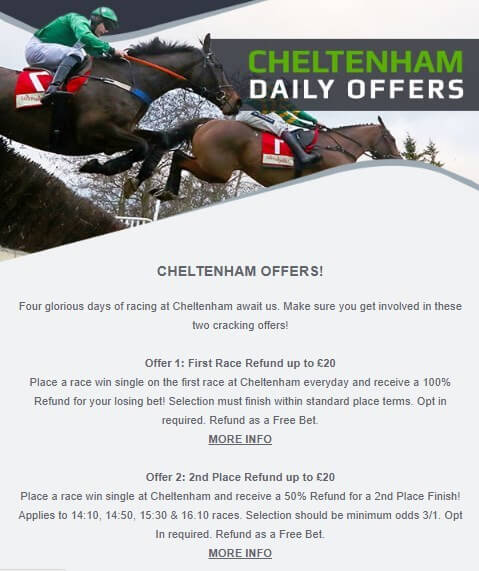 cheltenham betting, netbet offer