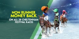 cheltenham betting, nrmb image