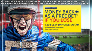 cheltenham betting, sky bet offer
