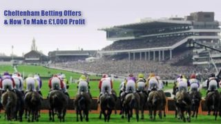 cheltenham betting, top image