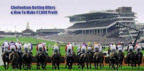 cheltenham betting, top image