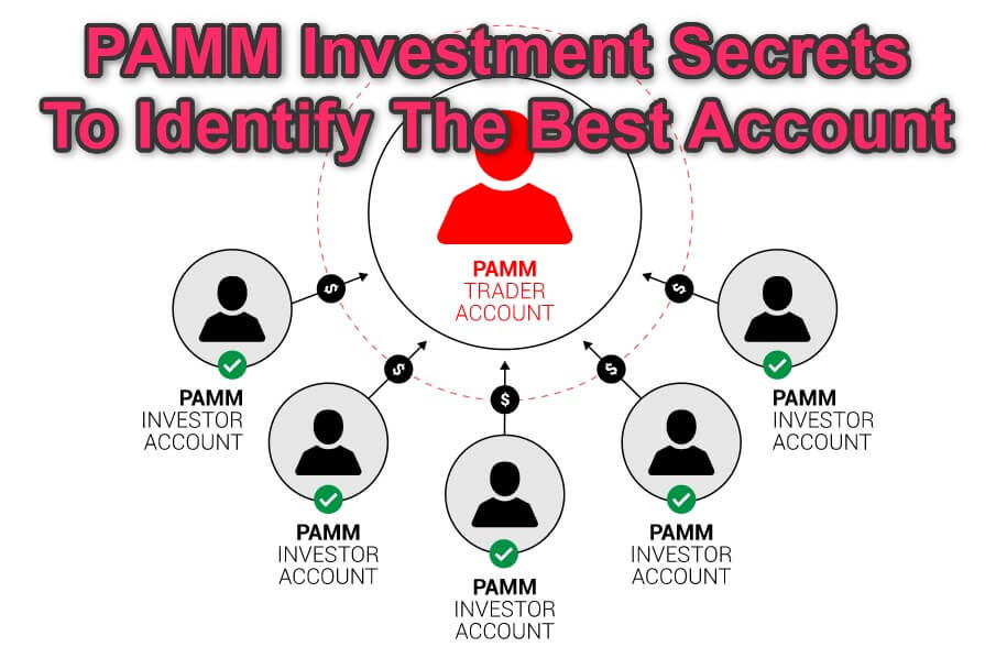 PAMM Investment Best Account feature image