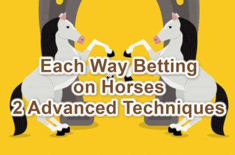 each way betting horses feature image
