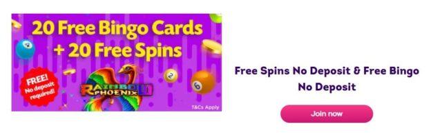 free bingo no deposit bonus example