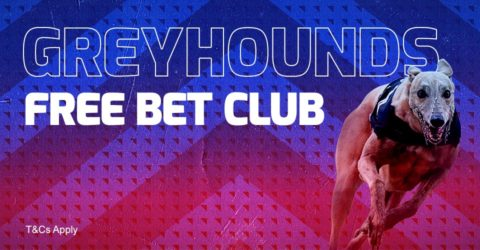 betfred greyhound club