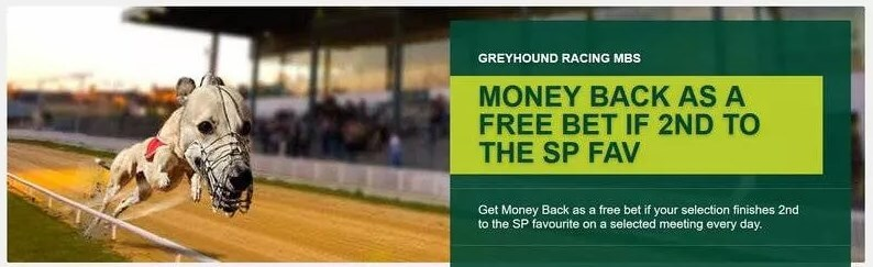 paddy power greyhound second to sp offer