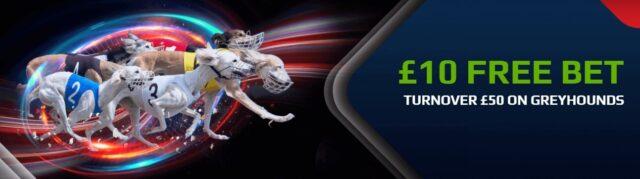 netbet greyhound offer