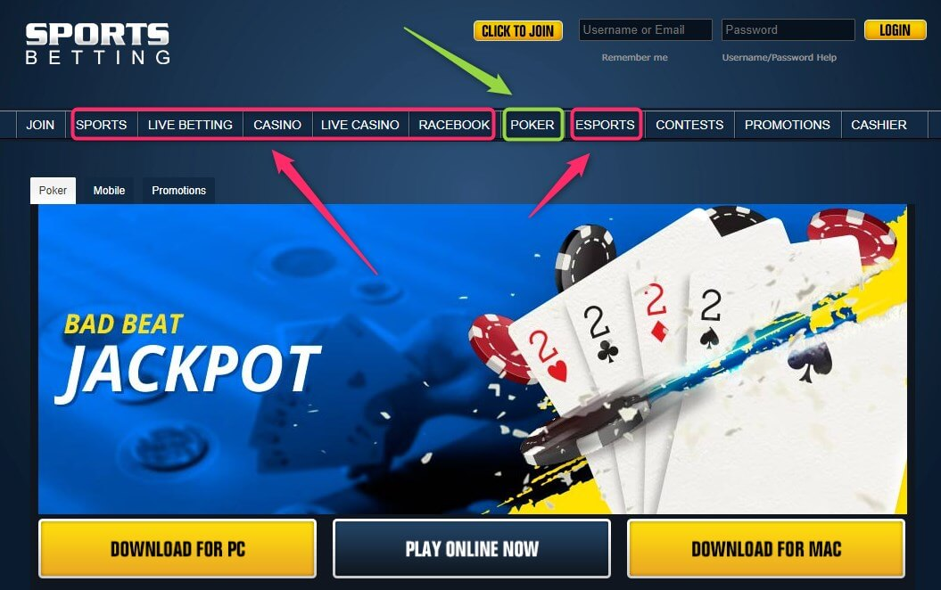 sportsbetting all in one service